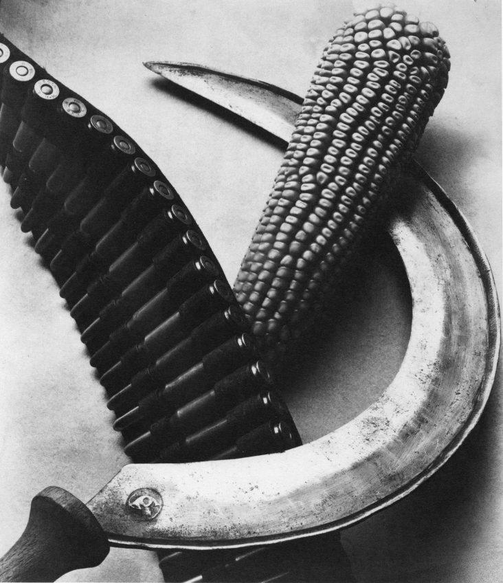 TINA MODOTTIPatronengŸrtel, Maiskolben und Sichel1927